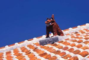 A shisa, warding off evil on a rooftop, Taketomi Island.